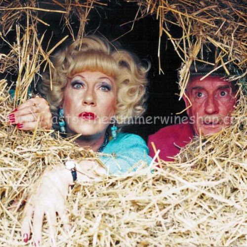 Marina & Howard in the Hay Bale